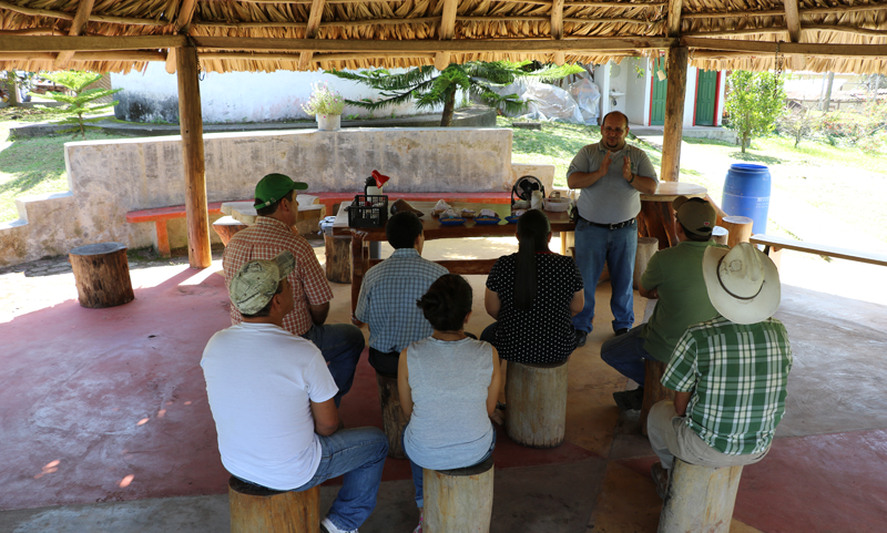 The Volcafe Way - training farmers on sustainable coffee production